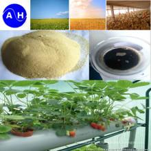 Adubo dos nutrientes de minerais do quelato do ácido aminado do cálcio