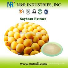 Natural 40% Isoflavones supplier/Soy Isoflavones/Soya Isoflavones
