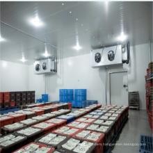 High Quality Cold Room Refrigerator Freezer For Vegetable