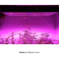 Dasiy Chain 1200W LED Plantlicht voor Orchid Plants