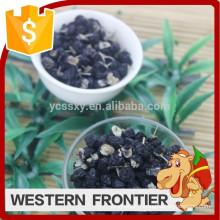 Type de culture biologique nouvelle culture Black goji berry