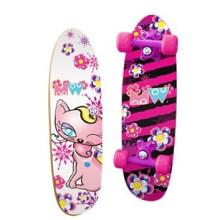 Popular Mini Children Skateboard (YV-2106)