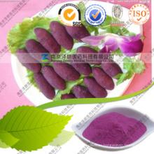 Narural пигмента порошок Фиолетовый сладкий картофель питания
