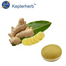 Ginger extract factory supply