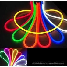A multi cor RGB quente da venda AC110V conduziu o cabo flexível de néon para a decoração exterior
