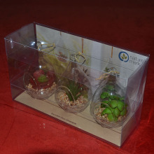 Crafts Clear Folding Box para los productos de la exhibición o las plantas puestas