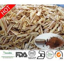 Fourniture d'usine en gros 100% naturel Tongkat Ali poudre d'extrait 100: 1