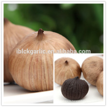 Fermented chinese solo black garlic benefit for health 500g/bag hot for sale in 2014