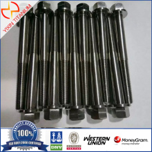 Full Thread Unstandard Titanium Bolt