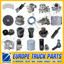 Over 1000 Items Iveco Heavy Duty Truck Parts