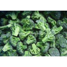High Quality Frozen IQF Broccoli