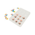 Kundenspezifische PET Clear Plastic Chocolate Blister Tray Pckaging