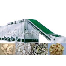 Secador de correia de malha de frutas e vegetais