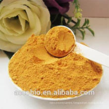 Manufacture Supply High Quality Basic Protease Powder with Preferable Price