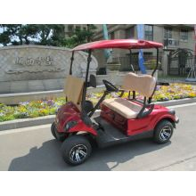 carrito de golf de gas pequeño para dos personas