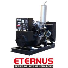 Generador diesel de alta velocidad baja Rpm (BIS20D)