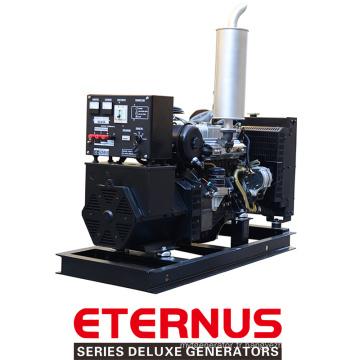 Générateur diesel de haute qualité à faible régime (BIS20D)