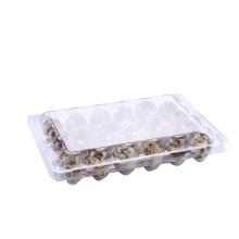 Bandeja de ovo de codorna em bolha de plástico transparente