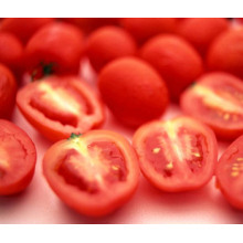 High Quality Extract Tomato Extract Lycopene HPLC