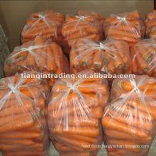 Rote Karotte zum Verkauf