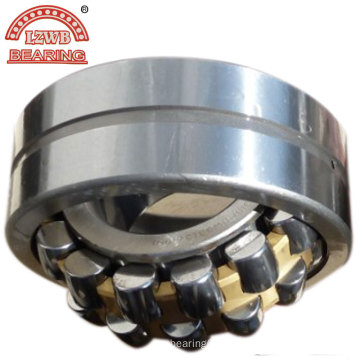 Spherical Roller Bearings with Brass Separate Cage (22312mbw33)