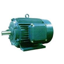 Y-Serie Elektromotor dreiphasig