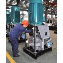 Hsv Series Ce Aprovado Vertical Sucção Dupla Split Case Bomba (HSV125-80-300A)