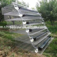 Sistema de Água Auto Quayer Quail Cage