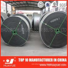 Heavy Duty Acid and Alkali&Chemical Resistant Conveyor Belt