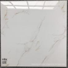 Steel Mold Cement Floor Tiles Nonslip Standard Size Double Loading Ceramic Tiles Porcelain Made in China