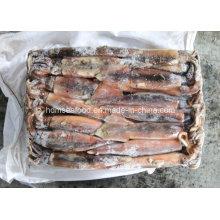 Calamares Illex Argentinus congelados