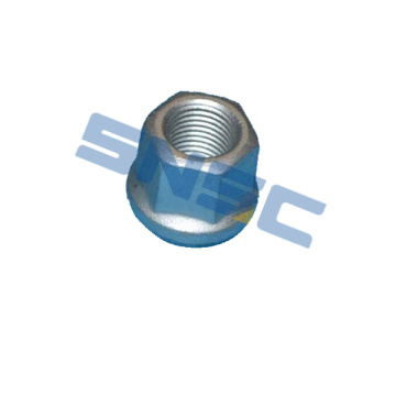 चेरी करी Q22B Q22E CAR PARTS K06-3100115 WHEEL NUT