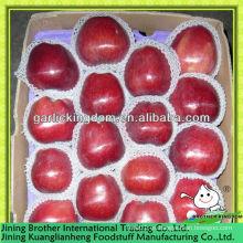 China Gansu manzana huaniu