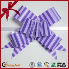 Gift Box Decoration Plastic Printing Ribbon Bow