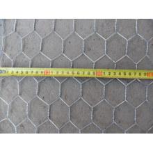 Hexagonal Wire Netting (electric galvanized)
