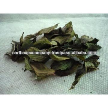 Dry spearmint leaves