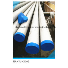 316L Seamless Stainless Steel Pipes with Blue Caps