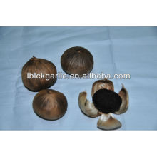 Healthy Natural Single Clove Black Garlic
