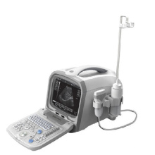 PT6601 Digitale Ultraschall-Diagnose-System
