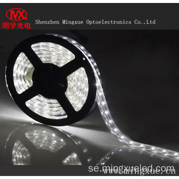 LED Super ljusa vattentät SMD3528 LED Strip ljus