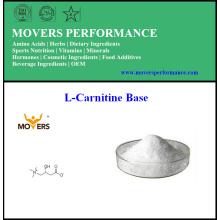 Base de L-Carnitine de perte de poids de vente chaude