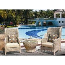 Modern Lobby Rattan Chair Hotel Furniture Manufacture (S287)