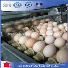 Wire Material Chicken Egg Poultry Farm Equipment