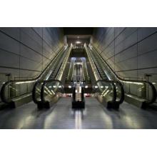 Escalator, Moving Passenger Lift