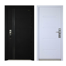 Steel door