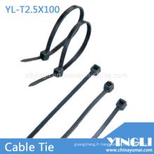 Attaches de câble en nylon pour le jardin ou la maison (YL-T2.5X100)