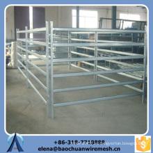 Personalizado de alta calidad y la fuerza de cuadrados / redondos / óvalos de estilo de los tubos de ovejas