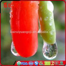 Ningxia Perfect Import baies de goji goji berry goji berry prix avec raisonnable