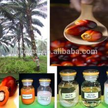Malaysia CP10 palm oil press,refining equipment