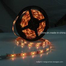 24V LED Strip Light 5050SMD 60LEDs Waterproof